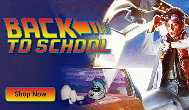 Back-to-the-future_Promo_Homepage (1)